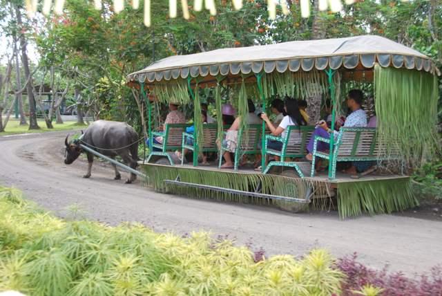 Arinaya White Beach Resort Entrance Fee
